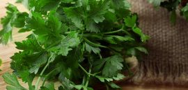 10 Dangerous Side Effects Of Cilantro