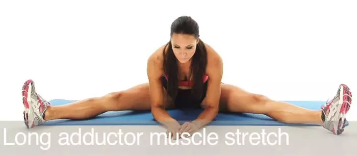 Long Adductor Stretch