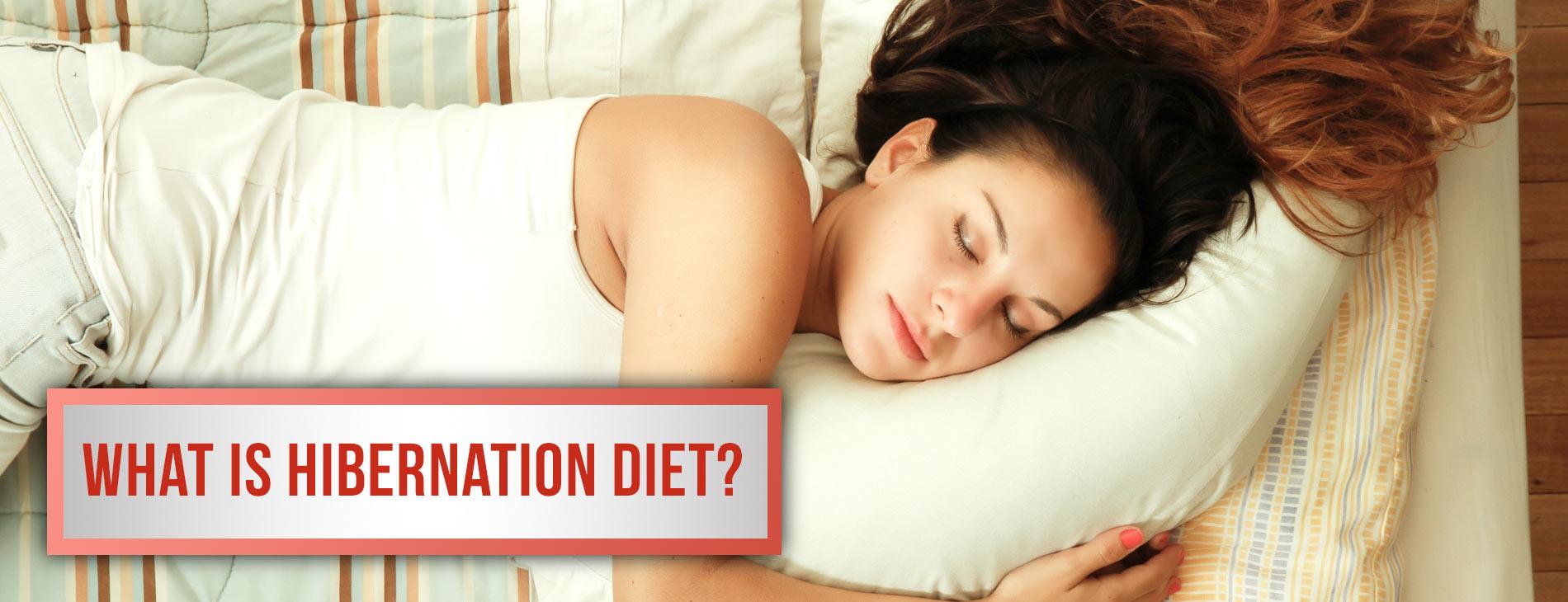 What Is Hibernation Diet