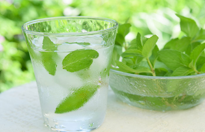 Infused Water Recipes - Refreshing Mint Infused Water