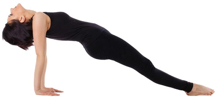 Arm Workouts Without Using Weights - Inverse Plank Leg Lift