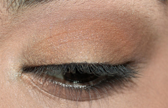 Katrina Kaif Eye Makeup - Step 2: Apply Dark Matte Brown Eyeshadow