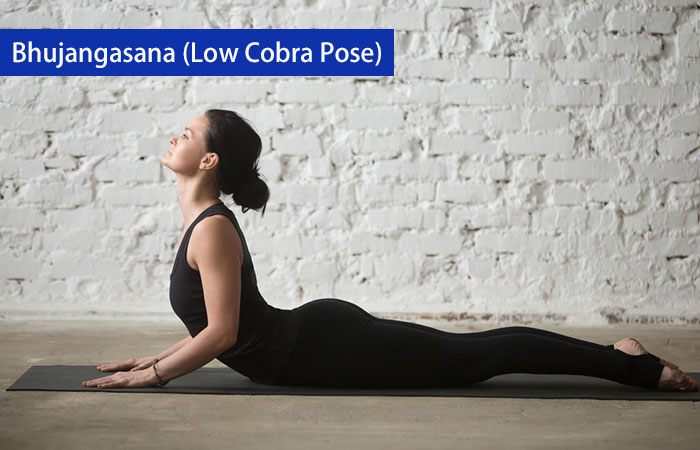1. Bhujangasana (Low Cobra Pose)