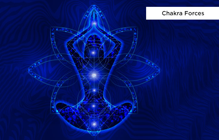 Chakra-Forces