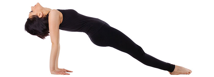 Plank Exercise - Reverse Plank