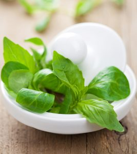 Stevia-For-Diabetics-–-Does-It-Work-As-Claimed