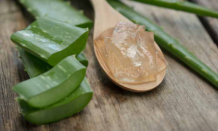 4.Coconut Oil And Aloe Vera Lip Balm