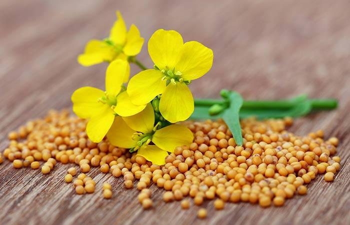 12.-Mustard