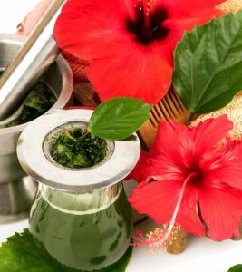15 Effective Ways To Use Hibiscus For Your Hair
