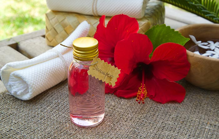 15 Amazing Ways To Use Hibiscus For Your Hair
