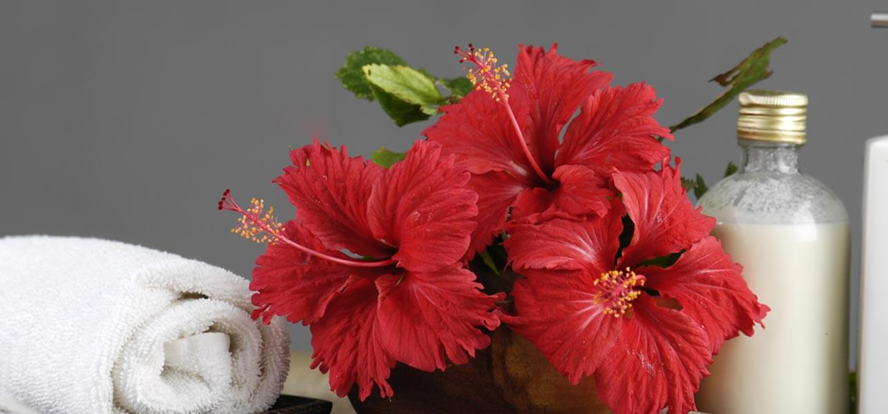 7-Amazing-Ways-To-Uses-Hibiscus-For-Your-Hair