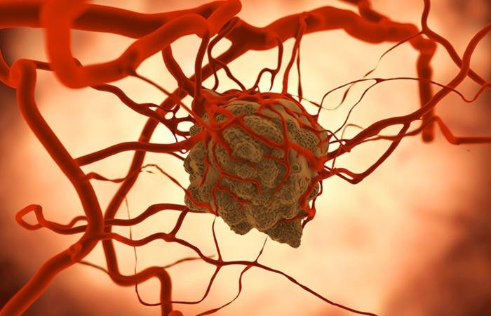 14.-Chemo-Preventive-Effect