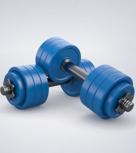 21 Best Ab Exercise Equipments You Can Try