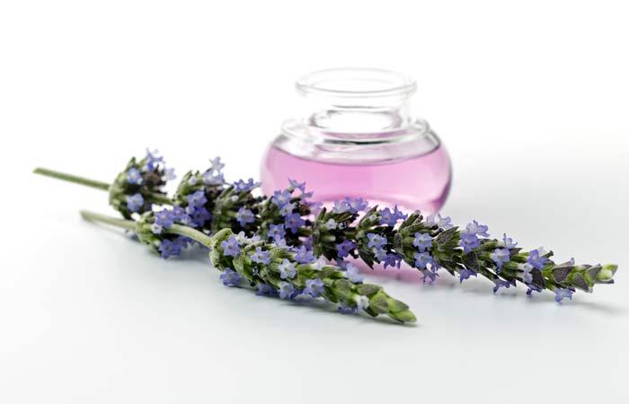 34.-Lavender