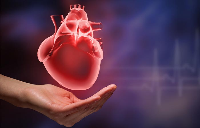 5. Strengthens The Heart