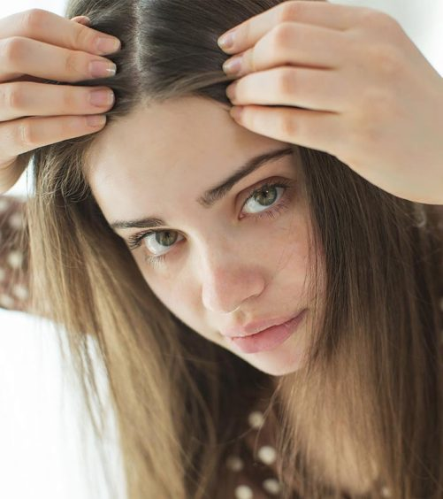 Anti Grey Hair Oils That Work Wonders On The Hair