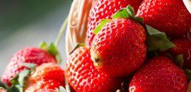 Best-Sources-Of-Antioxidants