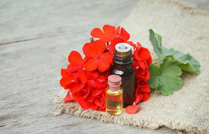 Best Essential Oils For Skin Care - Geranium Oil For Oily Skin