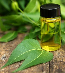 Neem Oil: Tips To Use It For Scabies Treatment