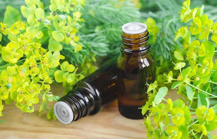 a. Cypress Oil