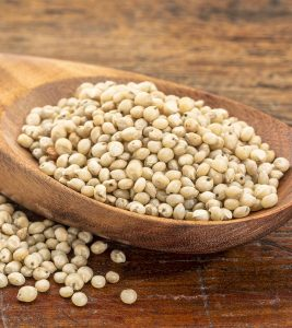 10 Amazing Health Benefits Of Sorghum (Jowar)