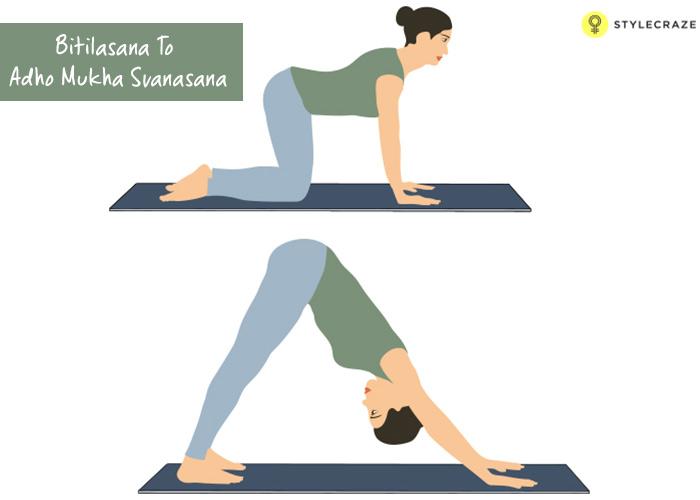 3.-Bitilasana-To-Adho-Mukha-Svanasana