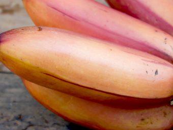614_15 Amazing Health Benefits Of Red Banana_233050750