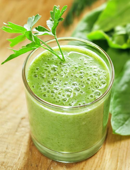 Best Protein Shake Recipes - Hemp Green Protein Shake (Protein – 6.61 g)