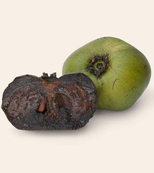 8 Amazing Health Benefits Of Black Sapote