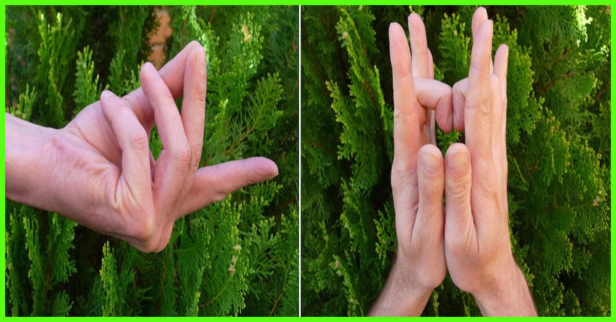 Garcinia cambogia helix6 photo 2