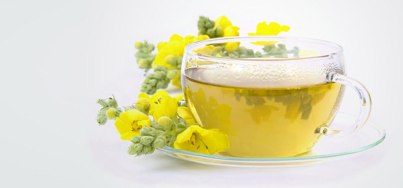 Mullein-Tea.jpg
