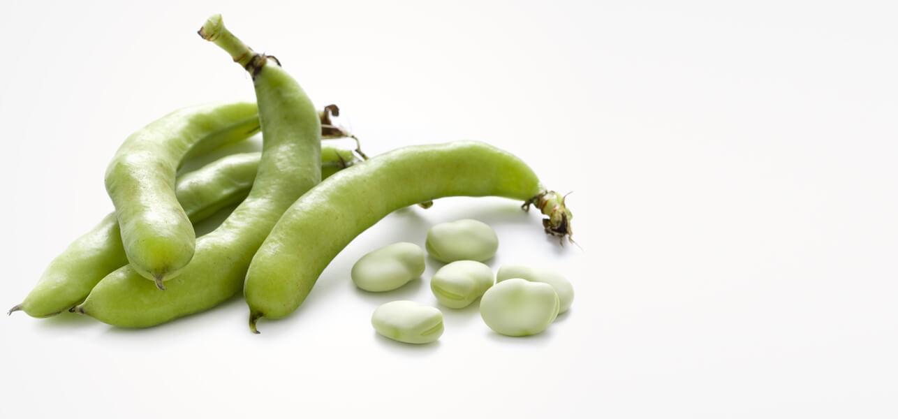 Nutritional-Value-Of-Fava-Beans