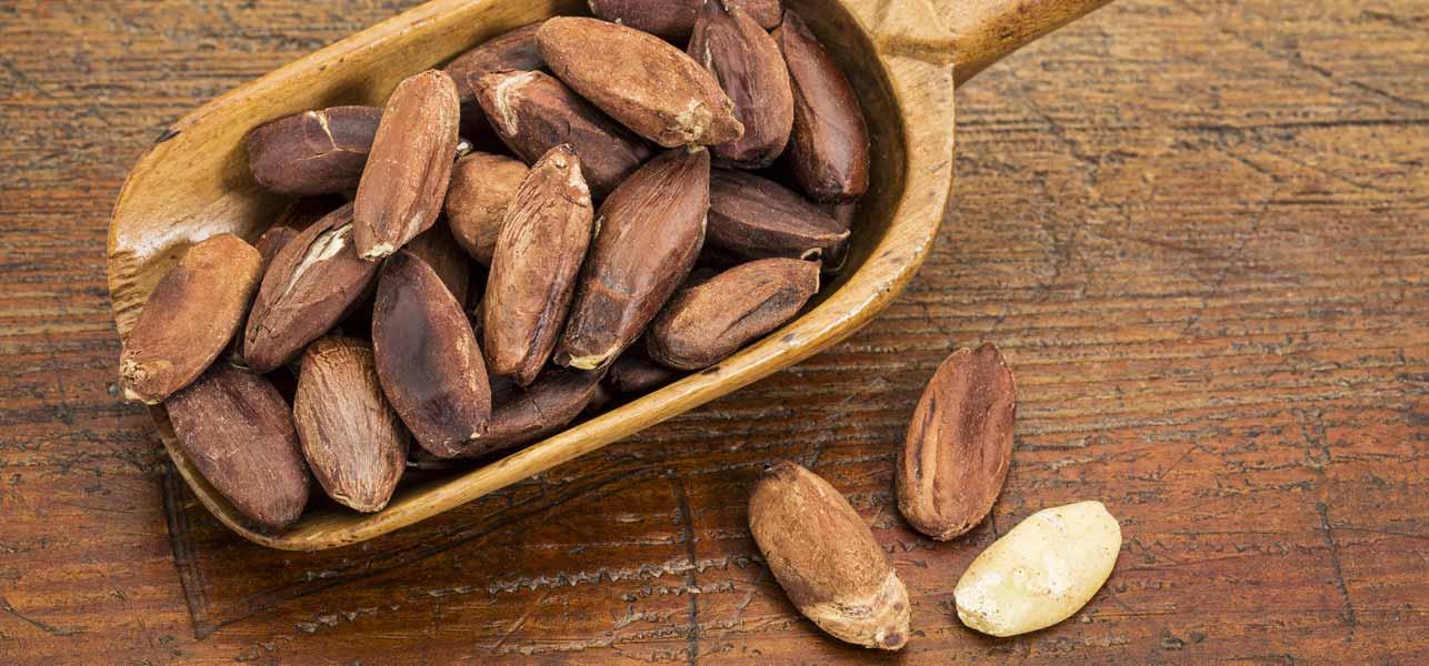 Pili-Nuts........