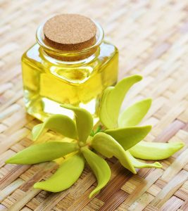 Ylang-Ylang Essential Oil: Benefits, Uses, And Side Effects