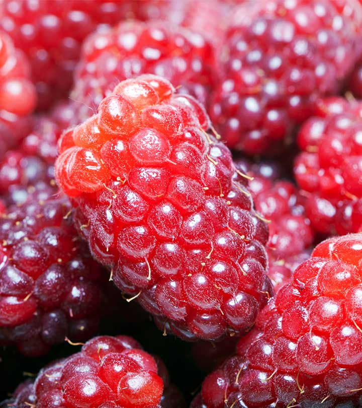 10 Amazing Health Benefits Of Loganberry