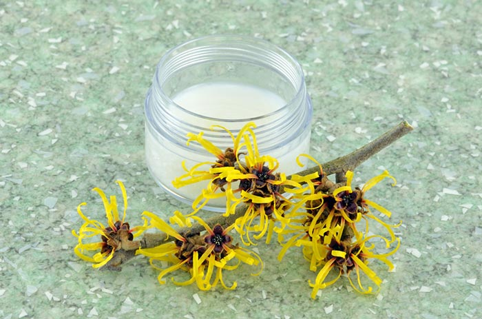 5. Witch Hazel