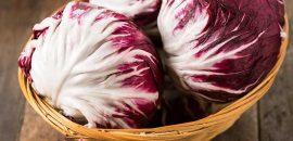8 Amazing Benefits Of Radicchio – The New Italian Superfood