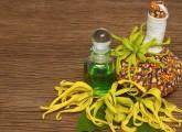 Benefits Of Ylang Ylang Oil