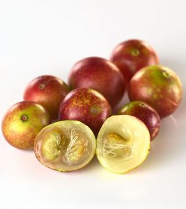 Fascinating Benefits And Facts About Camu Camu You NEED To Know!