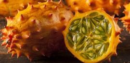 KiwanoHorned-Melon