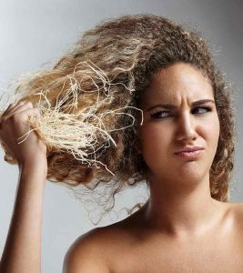 Is Olive Oil An Effective Solution For Dry Hair?