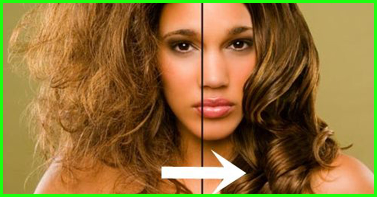 Is Olive Oil An Effective Solution For Dry Hair
