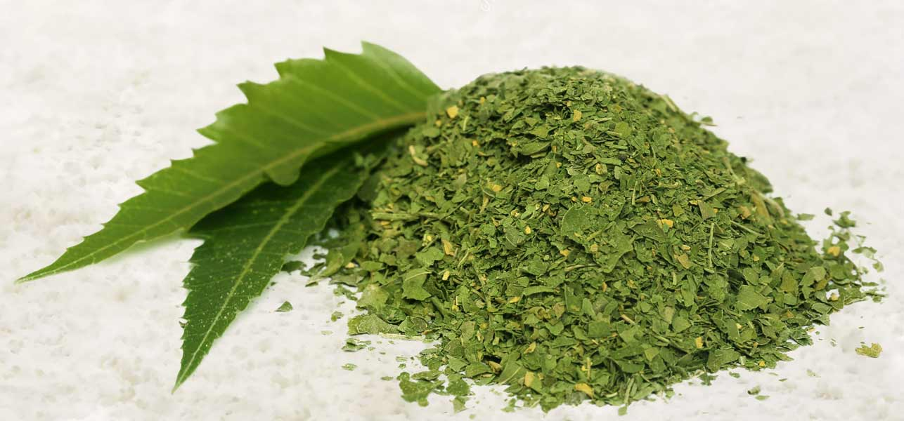 neem-powder