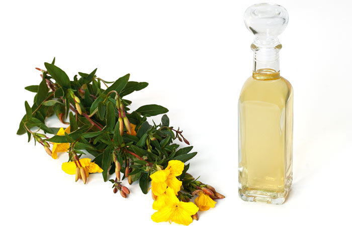 6.-Essential-Oil-For-Mucocele