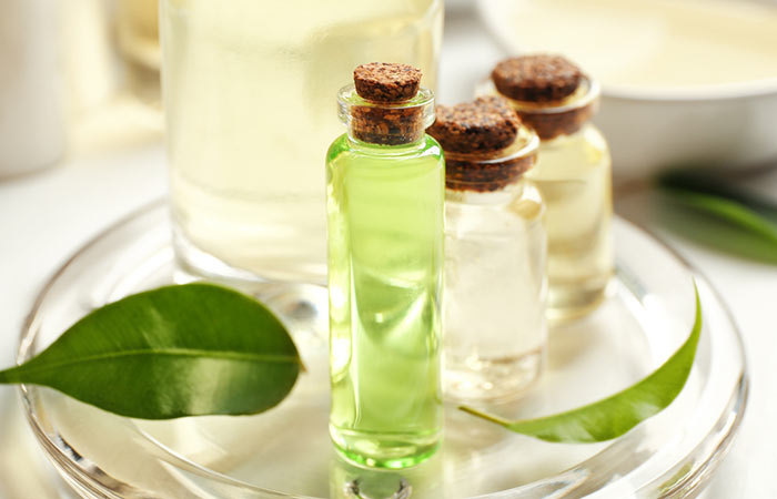 Is Tea Tree Oil Good For Keloids