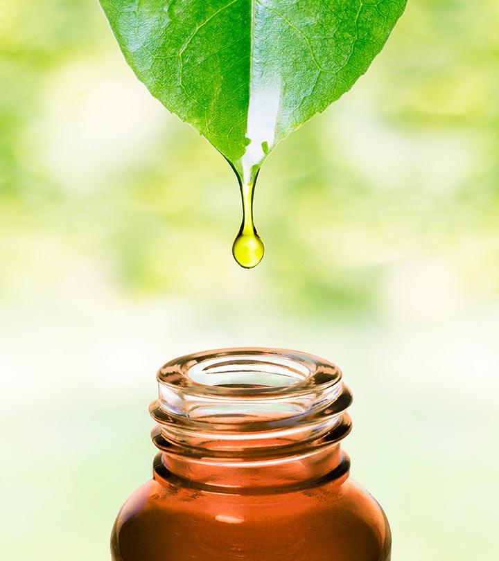 Top 10 Benefits Of Ravintsara Essential Oil