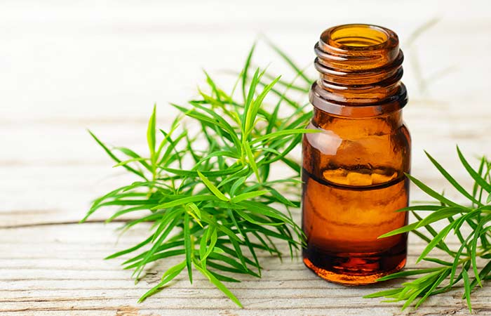 Vitamin E Oil And Tea Tree Oil