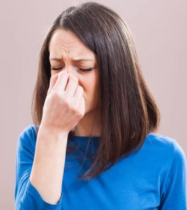 How To Use Eucalyptus Oil For Sinus Congestion