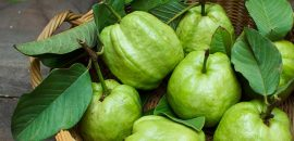 How Are Guava Leaves Beneficial For Your Hair?