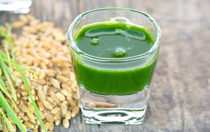 Trombosit Sayısını Arttıran Gıdalar - Buğday Çimi